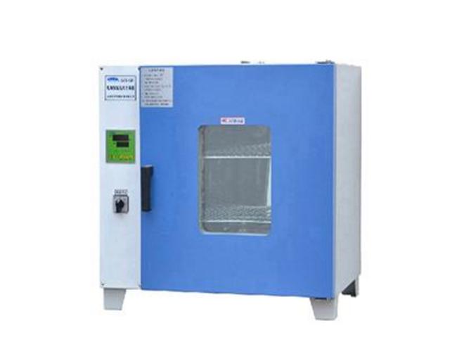 GZX-DH300-BS电热恒温干燥箱